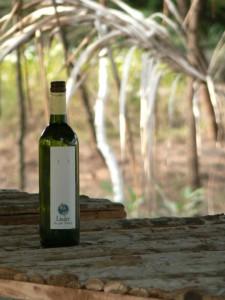 Bottled Water - Linger Style